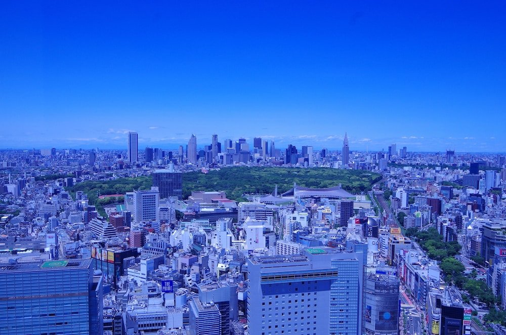 Cerulean Tower Tokyu Hotel, Tokyo Image 34