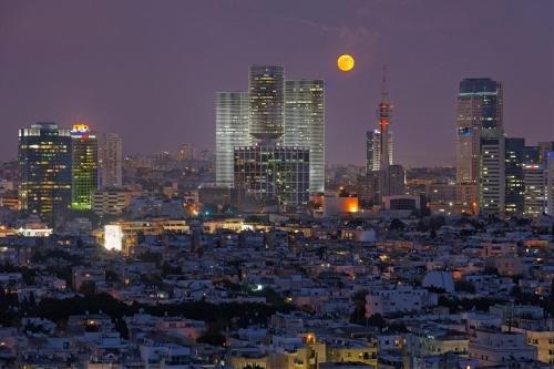 Herods Hotel Tel Aviv By The Beach Image 45
