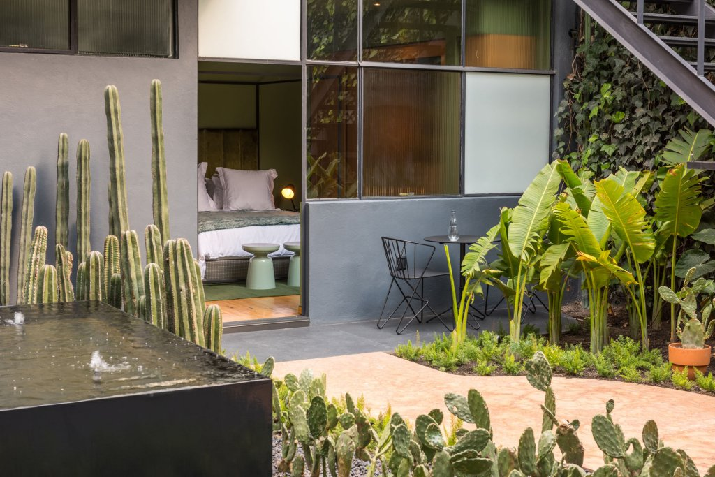 Ignacia Guest House, Mexico City Image 9