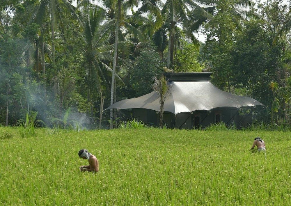 Capella Ubud, Bali Image 1