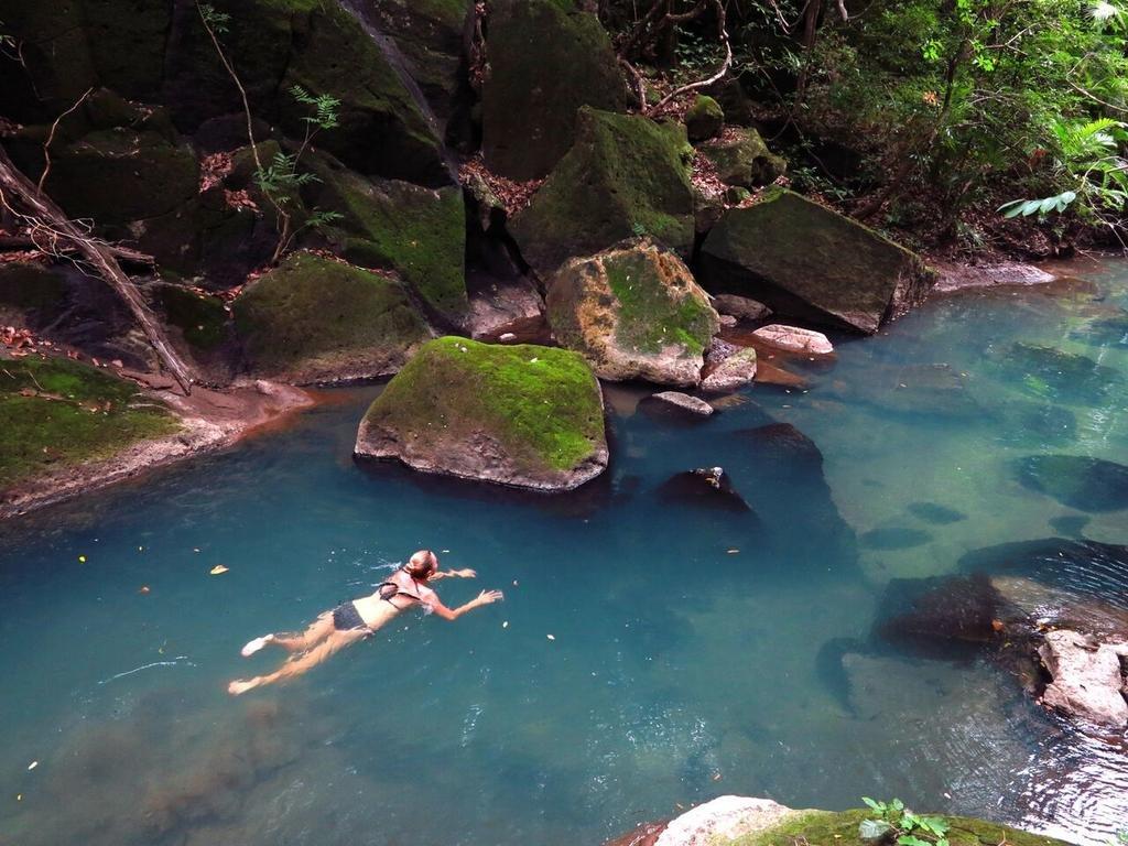 Rio Perdido, Guanacaste Image 12