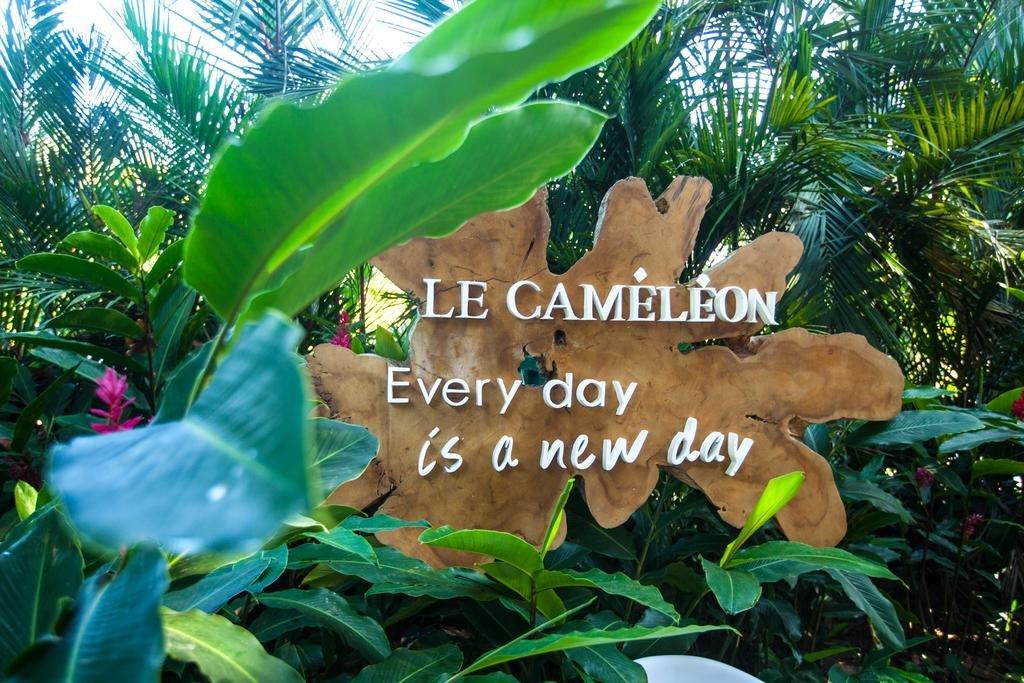 Le Cameleon Hotel, Limon Image 7