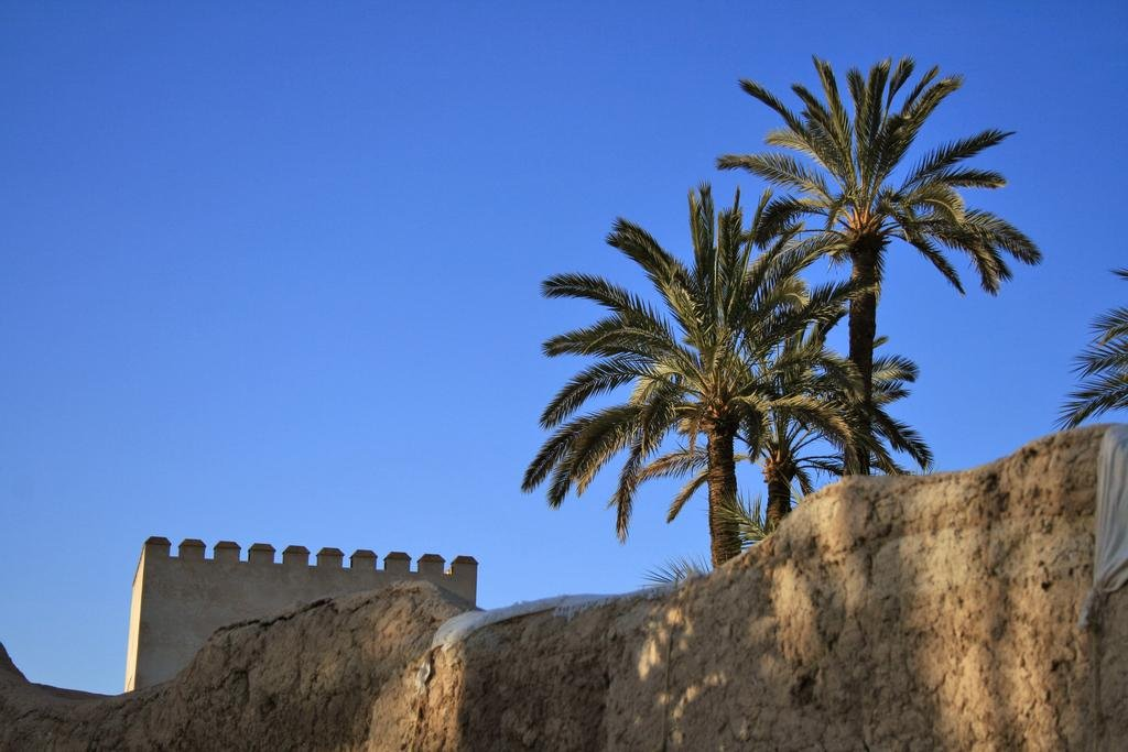 Ksar Char-bagh, Marrakech Image 14
