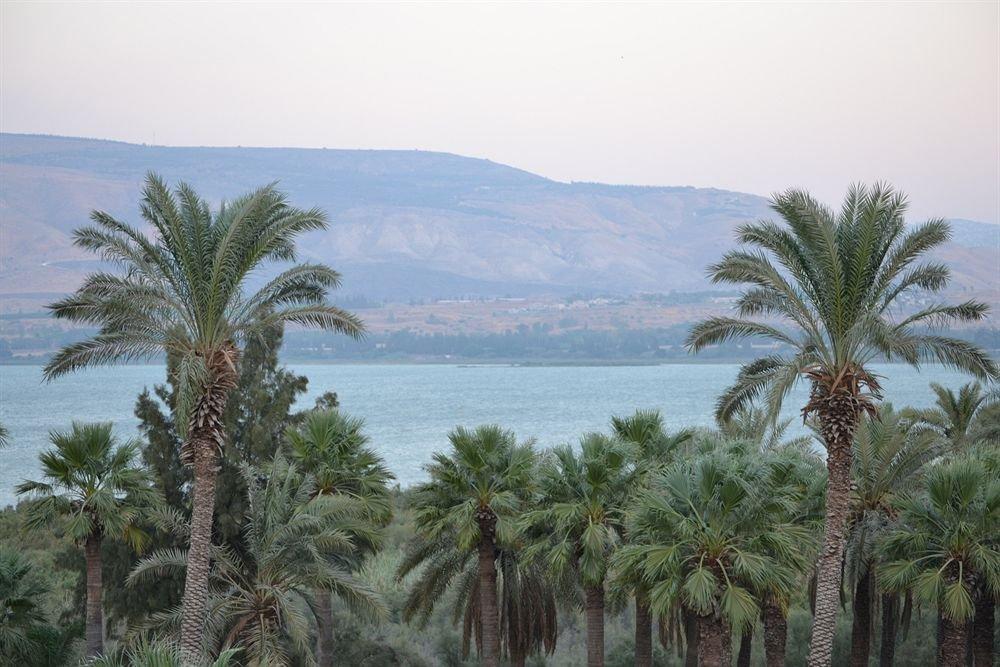 Kinneret Village, Sea Of Galilee Image 23
