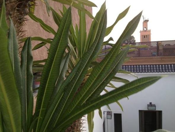 Dar 73, Marrakech Image 22