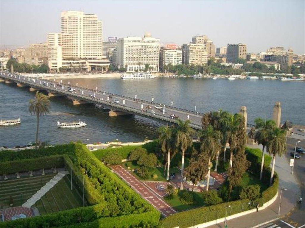 Novotel Cairo El Borg  Image 46