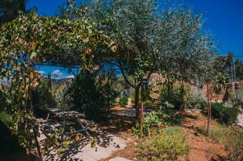 Tur Sinai Organic Farm Resort, Jerusalem Image 9