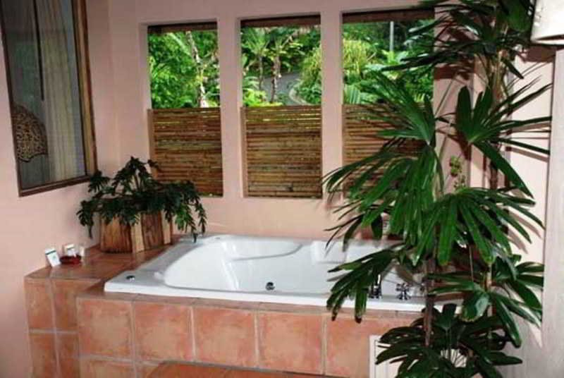 Lost Iguana Resort And Spa, Arenal Image 26