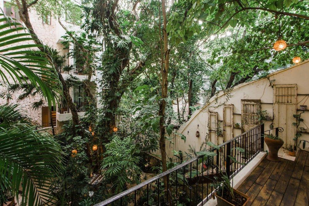 Hotel La Semilla Image 41