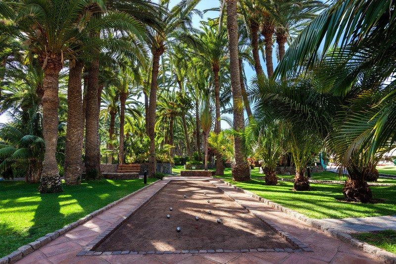 Seaside Palm Beach, Maspalomas, Gran Canaria Image 19