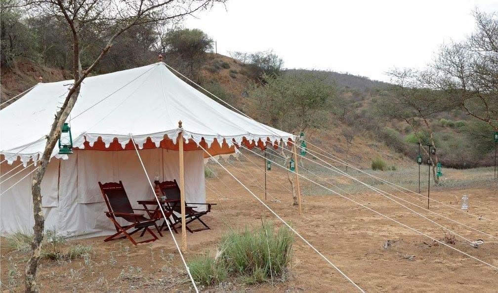 Dera Amer Wilderness Camp, Jaipur Image 10