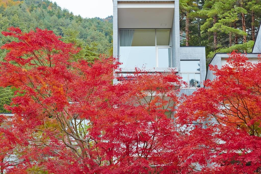 Hoshinoya Fuji, Fujikawaguchiko Image 29