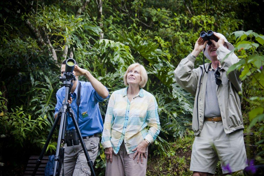 Monteverde Lodge & Gardens, Monteverde Image 25